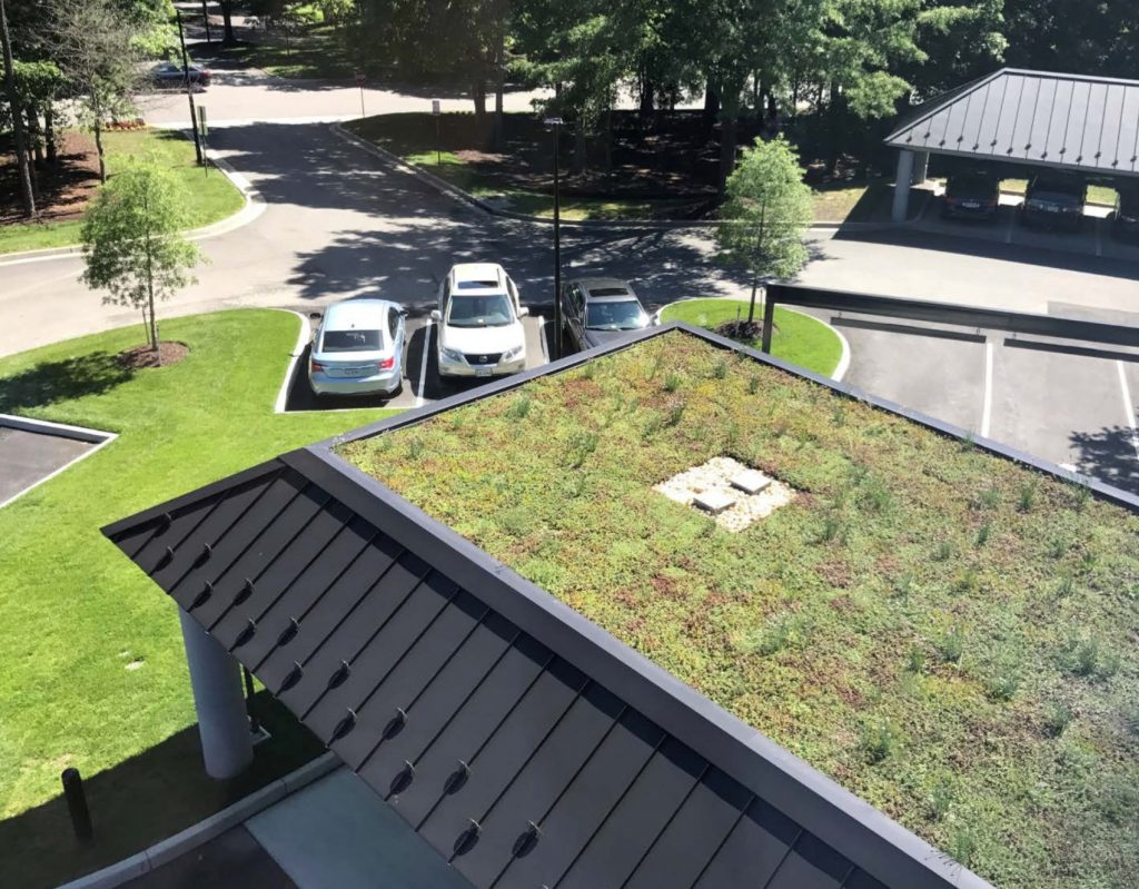 A Green Roof Takes Root at TowneBank
